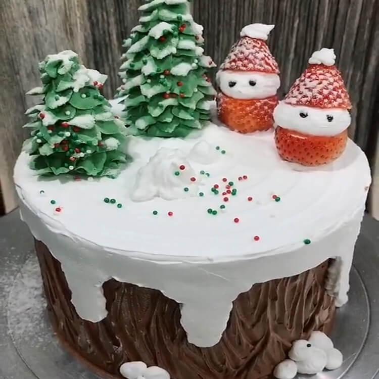 Christmas Cakes Ideas 14